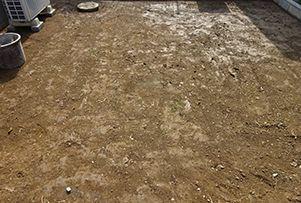 平らに仕上げた下地に丁寧に散水を行います。