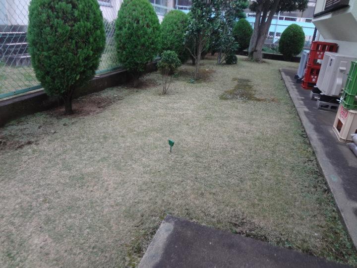野田市 T様邸 お庭のガチン固舗装工事 施工前