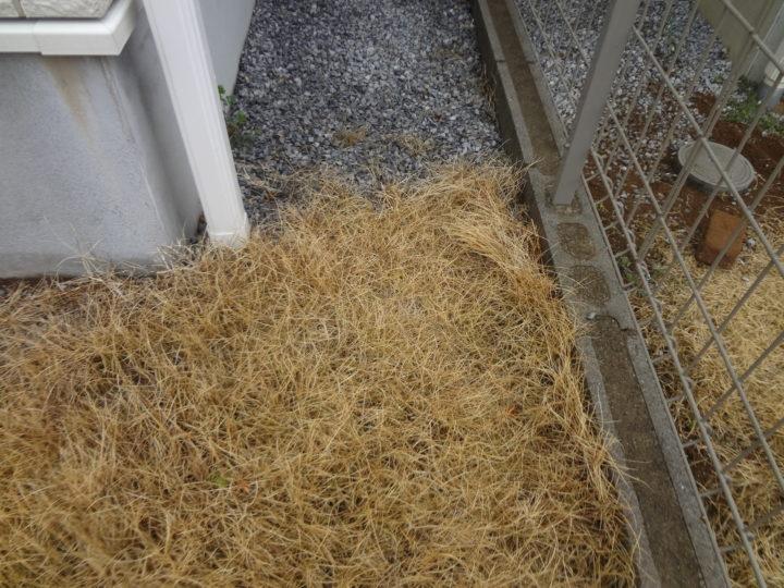 柏市 U様邸 芝生からガチン固舗装工事 施工前