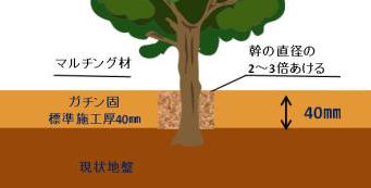 植樹帯施工